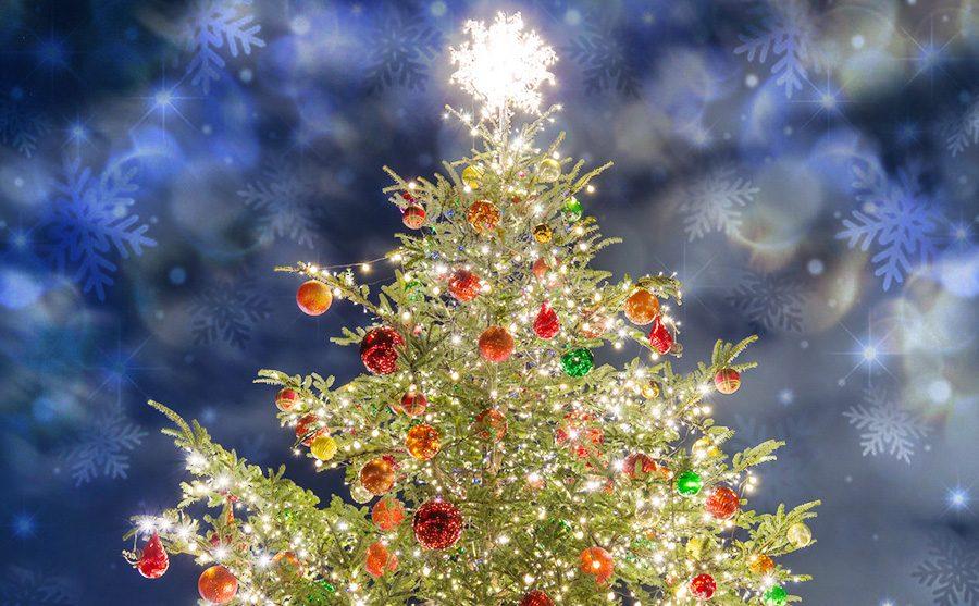 いくつ知ってる? クリスマス飾りの意味と由来 | イルミラボ