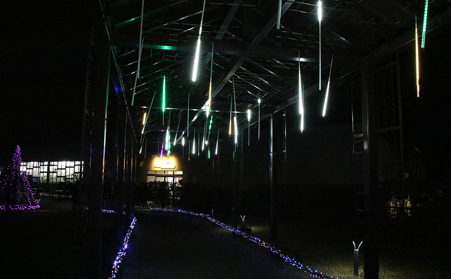 新潟の夜に輝くイルミネーション