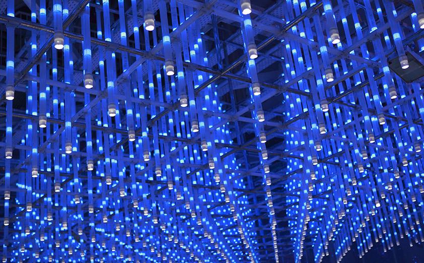 LEDライトが照らす未来に期待