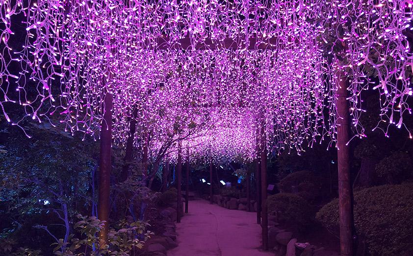年間約30万人が訪れる島根県の「日本庭園 由志園」が協力