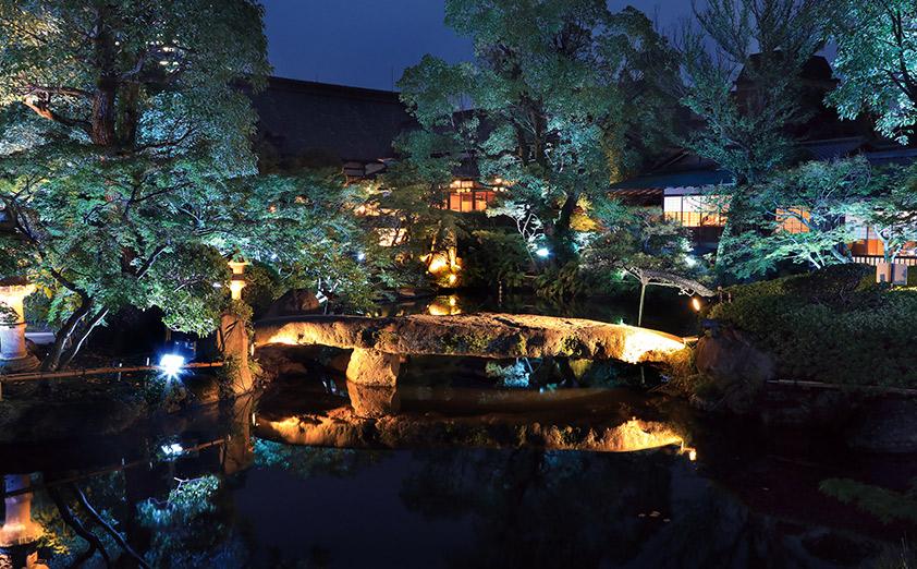 日本庭園を美しい伝統色で彩るイルミネーション
