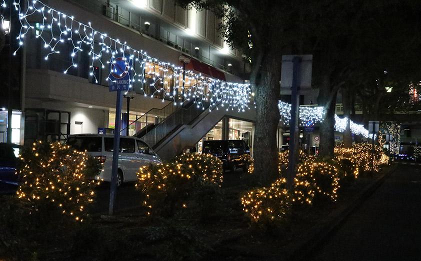 湘南台駅や江ノ島でもイルミネーションイベントを開催
